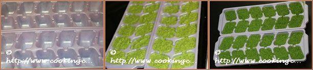 Mint-cilantrochutney_9to11