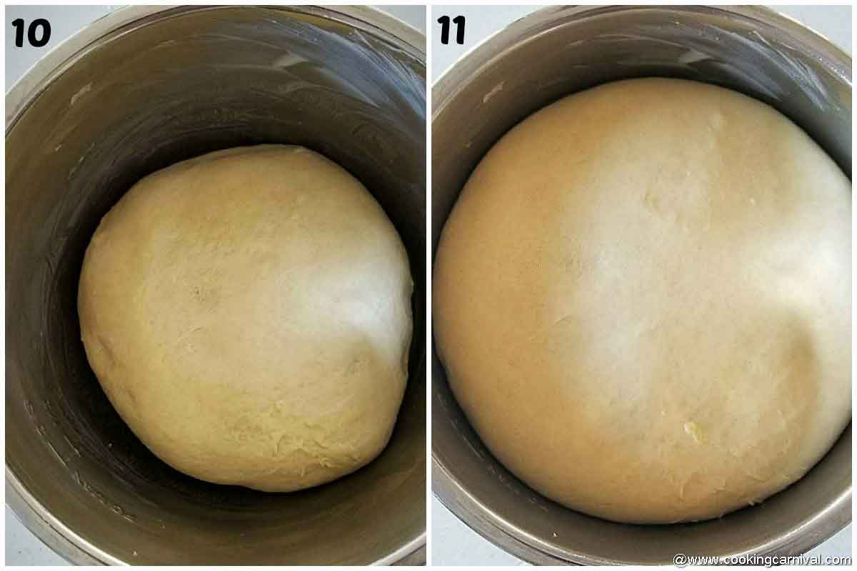 Proofing the dough in instant pot