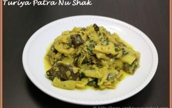 Turiya Patra Nu Shak