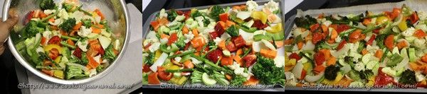 Oven Roated Veggie Quesedilla _3to5