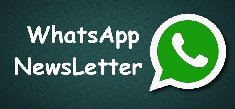 Whatsapp Newsletter