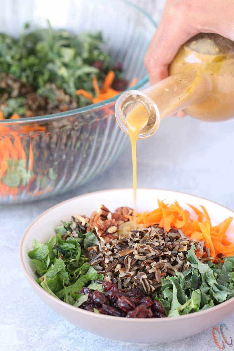 Orange Vinaigrette - A simple yet delicious, bursting with orange flavors, Vegan Vinaigrette for any Salad. This Orange Vinaigrette Recipe takes less than 10 minutes to make with very few ingredients! It is Bright, light and flavorful.
