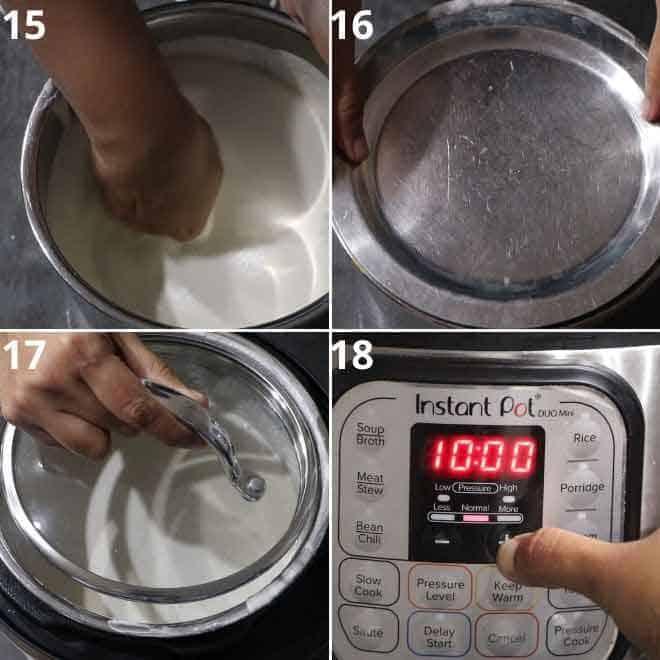 fermenting batter in instant pot